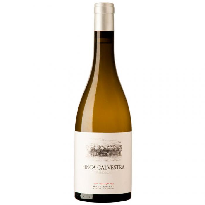 Vino blanco Finca Calvestra 2017